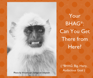 """Langur monkey appearing scared/overwhelmed; the text reads: """"Y0our BHAG: Can You Get There from Here?"""""""