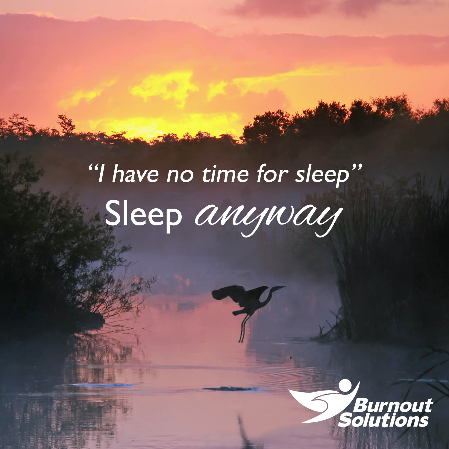 """Peaceful sunset reflected in a forest stream, with silhouette of flying heron, and text: """"I have no time for sleep. Sleep anyway."""""""